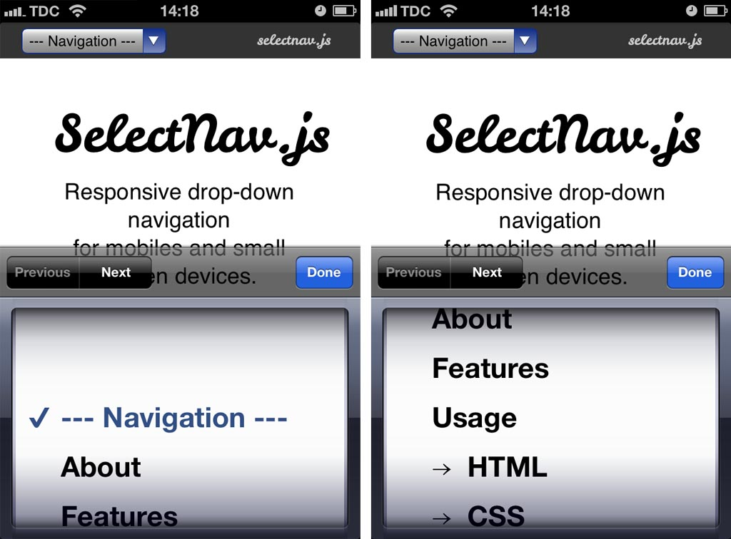selectNav.js is a plugin that turns custom navigation items into a native drop-down.